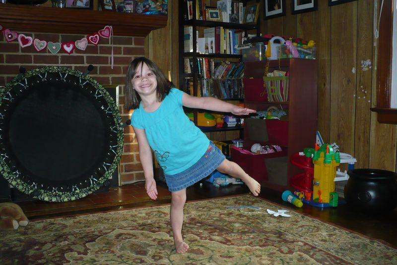 Wren ballet (2)